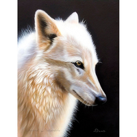 No Frame Wolf Animal DIY Painting By Numbers Kits Paint On Canvas Acrylic Coloring Painitng By