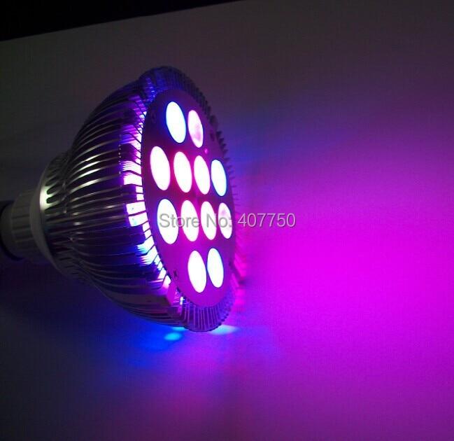 Gratis verzending naar Europe24V 4 draden rgb 12X1 W Par38 led spot - LED-Verlichting
