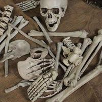 28Pcs Of Bag Bones Halloween Skull Skeleton Figure Decorations Holiday Props Haunted House Plastic Skull Head