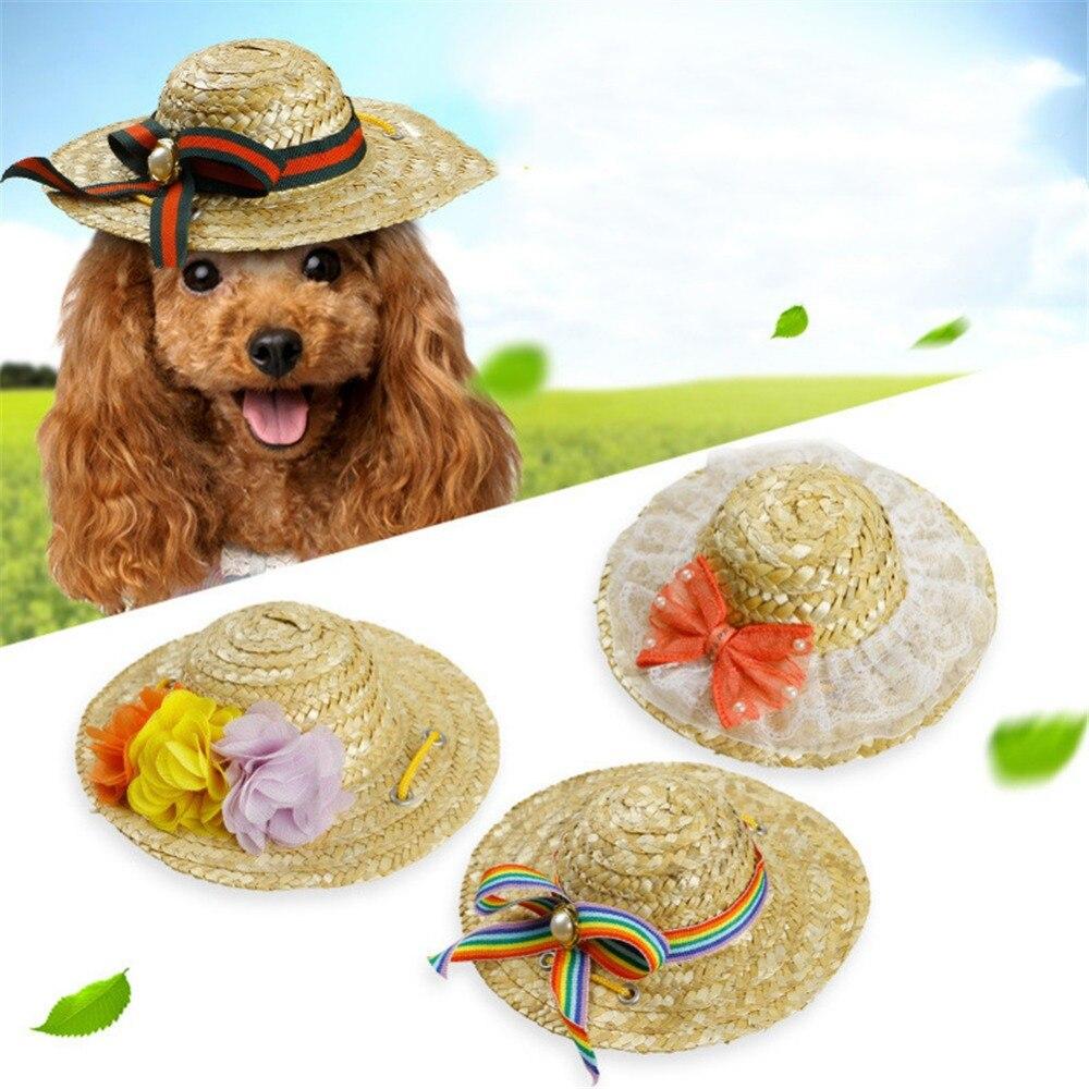 dog sun hat