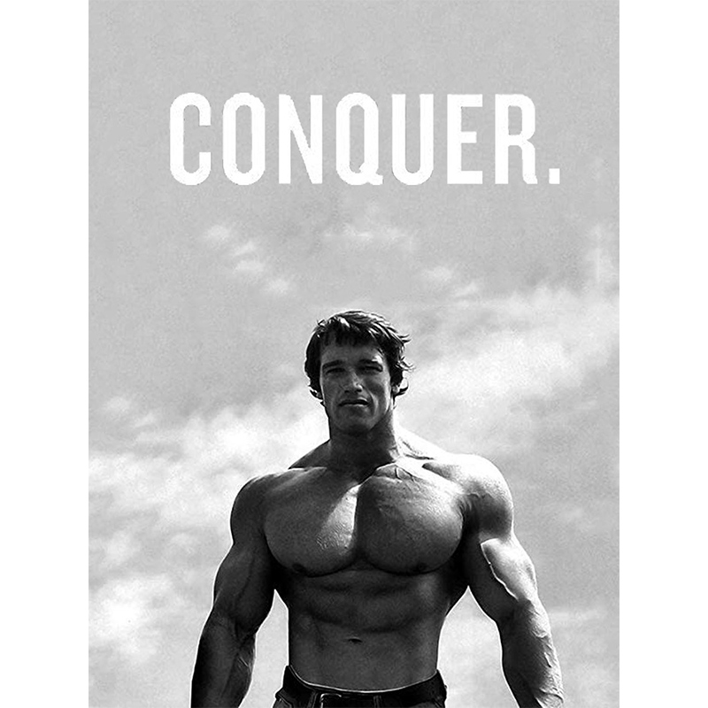 Arnold Schwarzenegger Bodybuilders Fitness Inspirational Canvas Painting Wall Art Style Painting <font><b>30</b></font> x <font><b>40</b></font> Inch Living Room Poster image