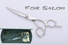 """Antelope5.5 """" профессиональный парикмахер салон ножницы / ножницы острые лезвия для прически и филировочные ZD18-I-55A"""