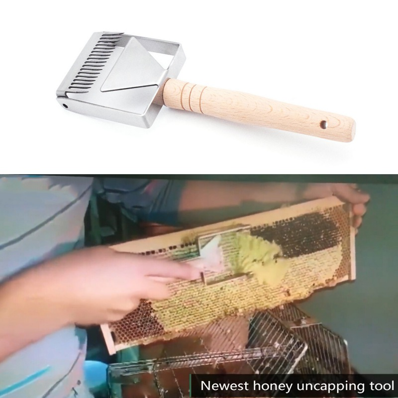 Image 5 - Uncapping Scraper Honeycomb Honey Scraper Tools Wooden Handle Beekeeping Tool Equipment Uncapping fork-in Beekeeping Tools from Home & Garden