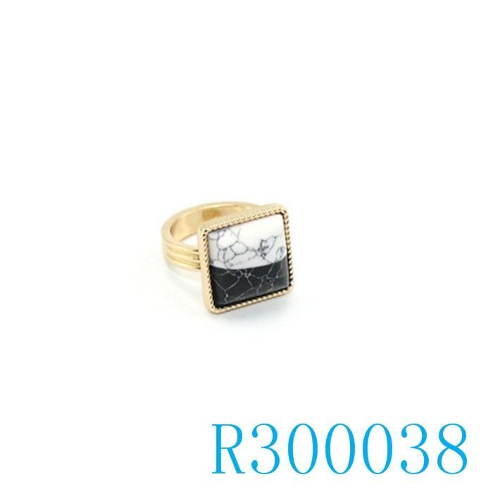 R300038