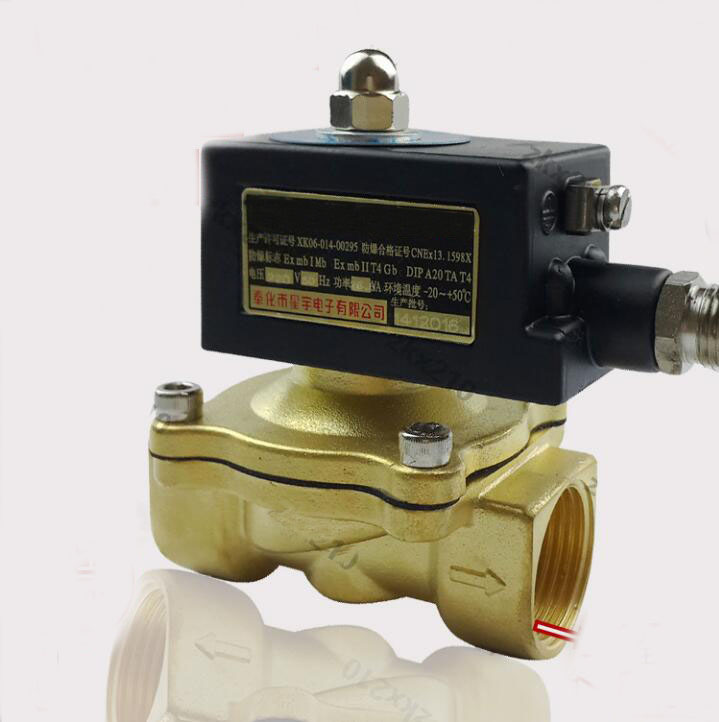 1  1/2  inch 2W series ex-proof air ,water,oil,gas solenoid valve brass electromagnetic valve 2way2position 3 8 electric solenoid valve n c gas water air 2w160 10