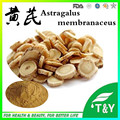 Organic plant extract Astragalus Membranaceus(fisch)Bunge extract for sale