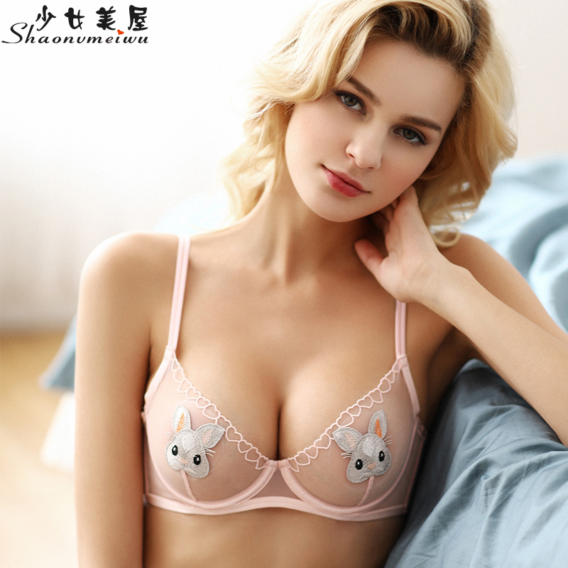 Full Transparent Mesh Sexy Embroidery Female Perspective Animation Underwear Set Ultra-thin Bra Cover