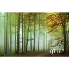 LB Polyester & Vinyl Backdrops Background For Photography Studio Backdrop Photo Props Black Autumn Foggy Forest Nature Leaves(China)