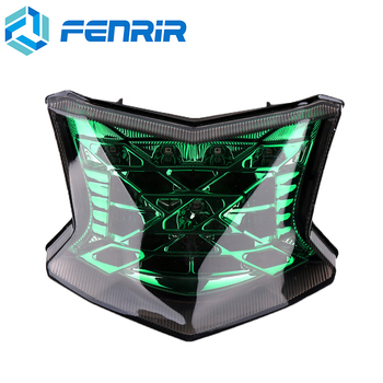 FENRIR Motorcycle Tail Light Motorbike Rear Brake Lamp Lights Turn Signal Indicators LED for Kawasaki Z900 Z650 2017-2018