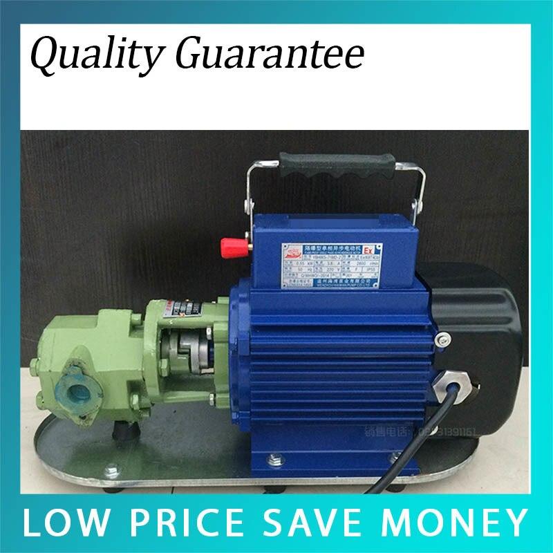 WCB-50 électrique auto-aspiration pompe à transfert d'huile 550 W grande puissance anti-déflagrant pompe à essence