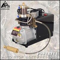 4500PSI High Pressure AUTO STOP 30MPA Electric PCP PUMP Compressor Air Pump for Pneumatic Airgun Scuba Rifle GUN PCP Inflator