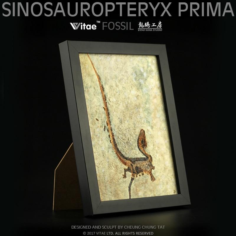 Vitae Fossils Jurassic Dinosaur Original Chinese Dragon Bird Carved Stone Table Pendant Photo Frame Home Dec