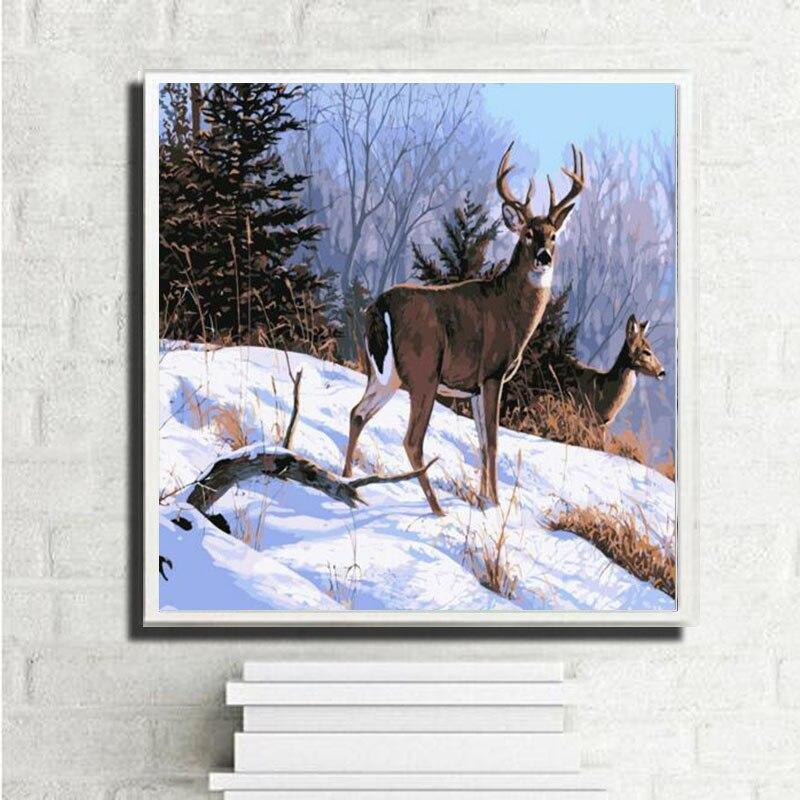 Peinture au num/éro en bois encadr/é Toile Peinture /à lhuile DIY avec Brosses et peintures acryliques pour Adultes et enfants Double Arch 40cm/×50cm en bois encadr/é