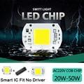 High Lumens COB LED Chip 5W 10W 20W 30W 50W LED Lamp Bulb 220V 240V Input IP65 Smart IC For DIY Outdoor LED Flood Light