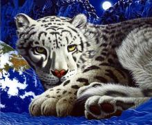 Diy Diamond Painting 5D White Tiger Embroidery Cross Stitch Animal Rhinestone Mosaic Paintings