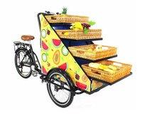 Commerciële pedaal/elektrische mobiele voedsel winkelwagen fiets ijs voedsel trailer mobiele voedsel trailer-in Voedsel Verwerkers van Huishoudelijk Apparatuur op
