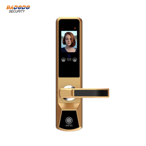 Smart face recognition electric door lock palm print door gate lock anti-theft home villa access control door lock system Karachi