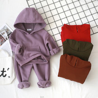 Autumn Winter Fashion Children Tracksuit Kids Clothing Set 2pcs Baby Boys Girl Outerwear Jumper Hoodie+Pants Fleec Suit Outfit