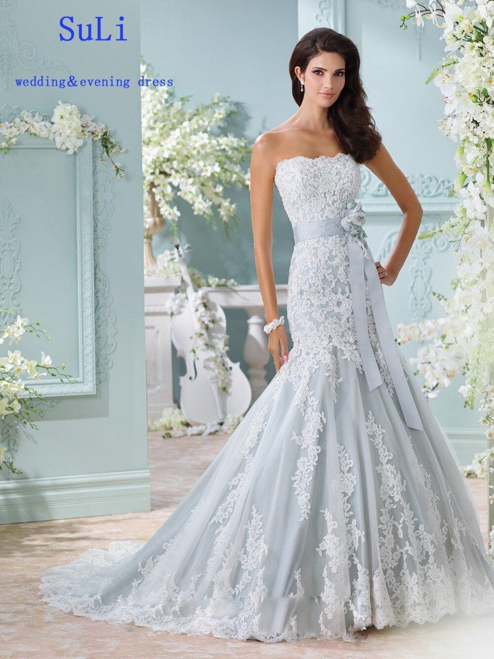 Amazing Wedding Dresses With Veils Photos - All Wedding Dresses ...