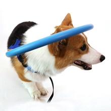 Blind Pet Anti-collision Ring Collar  Safe Halo Harness For Blind Dogs Scorpion Cataract Animal Protection Circle Guide Dog