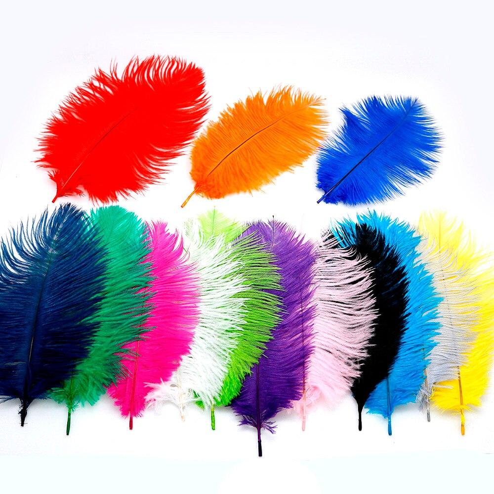 10 Cái Nhiều Màu Tự Nhiên Lông Đà Điểu 15 20 Cm Lông Viền Cho Áo Cưới Váy Trang Trí Tự Làm Quần Áo phụ Kiện|feather fringe|feather fringe trimostrich feather - AliExpress