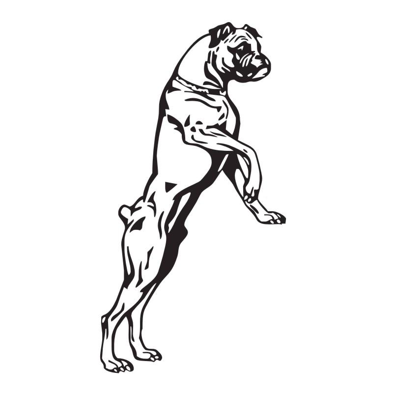 Stor Storlek Boxer Hund Väggdekaler Vinyl Klistermärken - Heminredning - Foto 2
