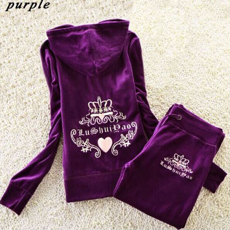 Spring Fall 2017 Women s Velvet fabric Tracksuits Velour suit women Track suit font b Hoodies