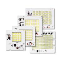Keine notwendigkeit Fahrer SMD LED Lampen LED Smart IC AC 220V 10W 20W 30W 50W 100W Für DIY Flutlicht Kalt Warm Weiß außen beleuchtung|LED-Chips|Licht & Beleuchtung -