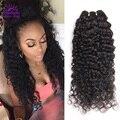Необработанные Сырье Индийской Девы Волос 4 Bundle Предложения Rosa Продукты Волосы Индийский Вьющиеся Волосы Девственные Вьющиеся Переплетения Человеческих Волос