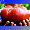 Monstruo Gigante de la herencia Semillas de Tomate Dulce Genuinas, Paquete profesional, 100 Semillas/Paquete, muy Raras Verduras TS177