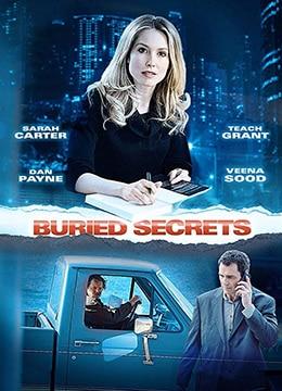 《掩盖的秘密》2015年加拿大惊悚电影在线观看