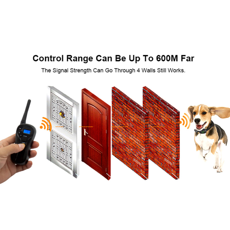 remote Dog Traing