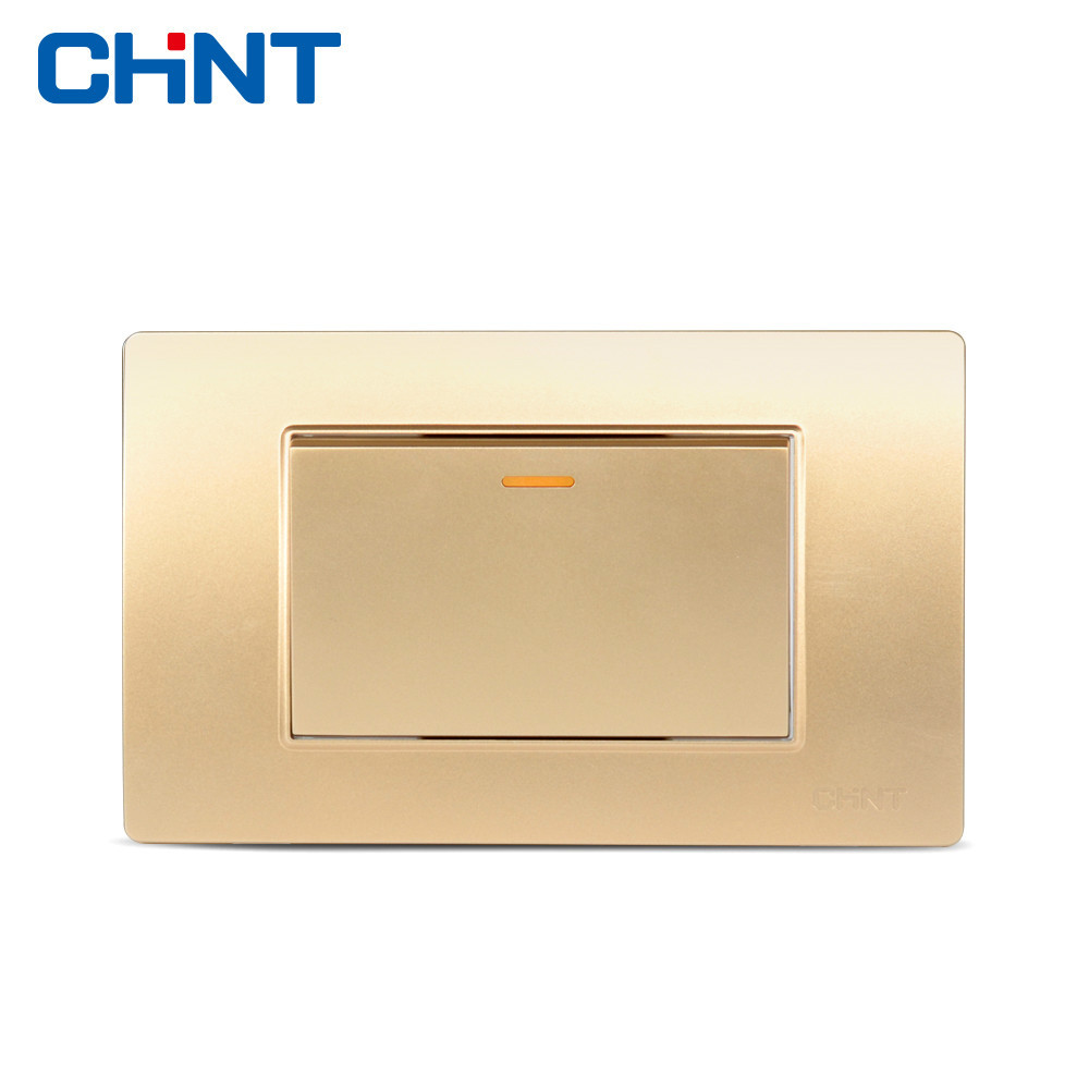 CHINT Electric Two Position One Gang Way Switch Panel 118 Type NEW5D Steel Frame