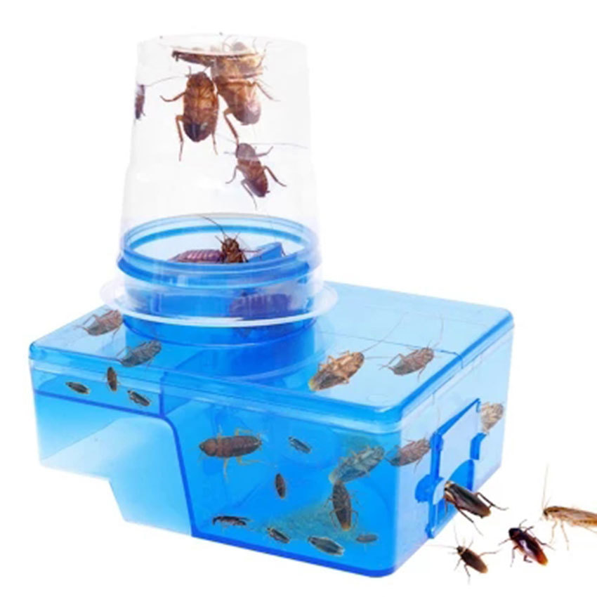 Effective Traps for Cockroaches Catcher Box Come with Bait, Cock Roach Repeller Killer Insect Pest Control Safe & Non-toxic