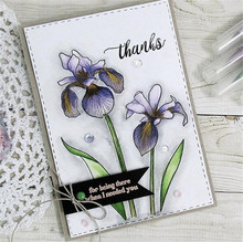 Flower Leaves Clear Stamps and Metal Cutting Dies Scrapbooking for 2019 New Craft Dies Set Photo Album Embossing Decor Stencils naifumodo feather clear stamps and metal cutting dies scrapbooking 2019 new making cards craft dies set embossing decor stencils