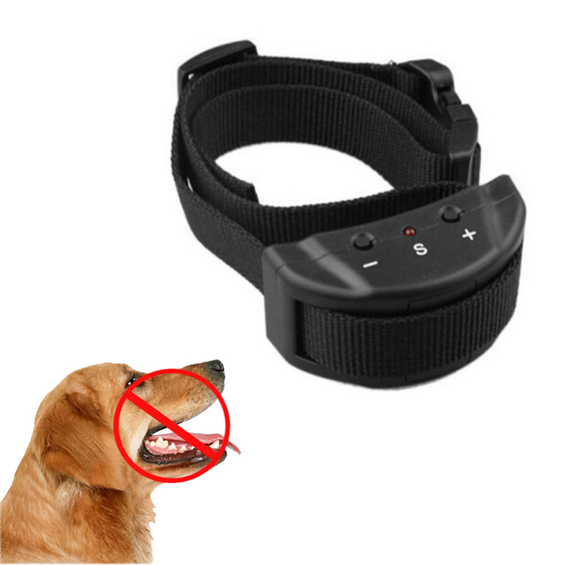 Best Dog Collars To Stop Barking