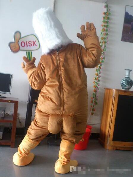 99 $ en Stock Costume de mascotte de faucon aigle brun Halloween fête d'anniversaire de noël tenue de carnaval accessoires complets - 4