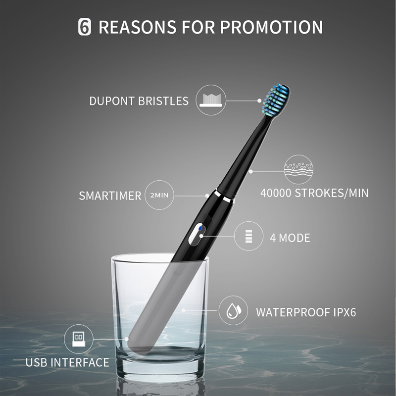 Image 2 - Seago Sonic Rechargeable Electric Toothbrush with 3 Replacement Brush Heads 2 Minutes Timer & 4 Brushing Modes Waterproof SG551-in Electric Toothbrushes from Home Appliances