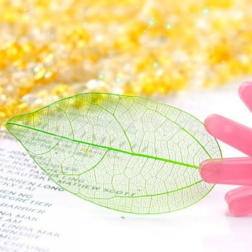 50Pcs Natural Catbrier Skeleton Leaf Leaves Card Scrapbook - Green
