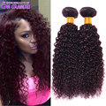 Mink 7A Brazilian Kinky Curly Virgin Hair Burgundy Red Human Hair Extension 2Pcs Brazilian Curly Hair Weaves Tissage Bresilienne