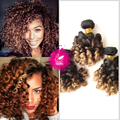 Swan Hair 9A human hair extension 4 bundle Indian spiral curly virgin hair weave 3 tone ombre bouncy curly hair wave 1b/4/27