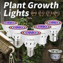 GU10 LED Lamp For Seedlings B22 Plant Led Light E27 48 60 80leds gu5.3 Greenhouse Growth Bulb 220V E14 Indoor Growing Tent