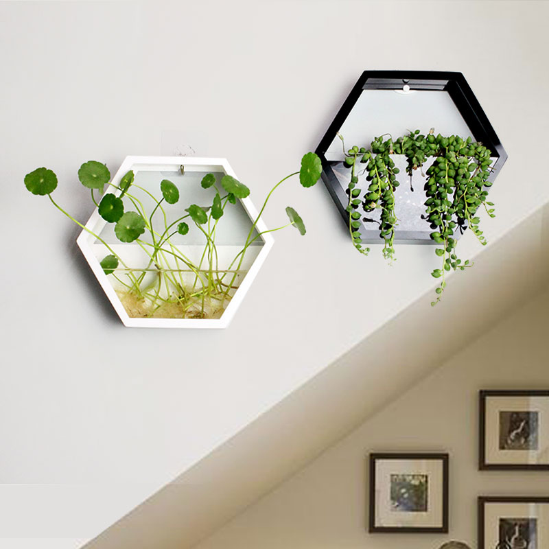fashion simple home polygon wall pots creative pastoral flowers and plants hydroponic plants