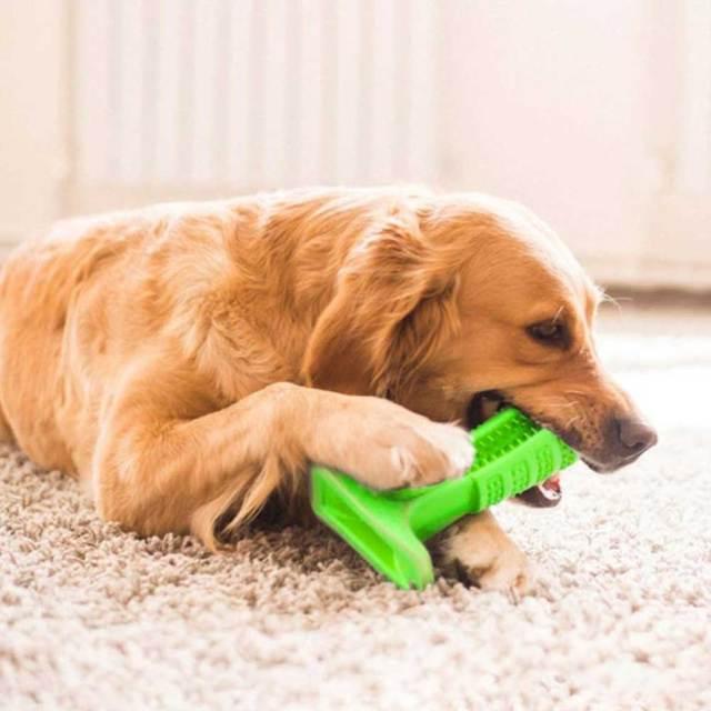 Dog Dental Care Chew Toy 2