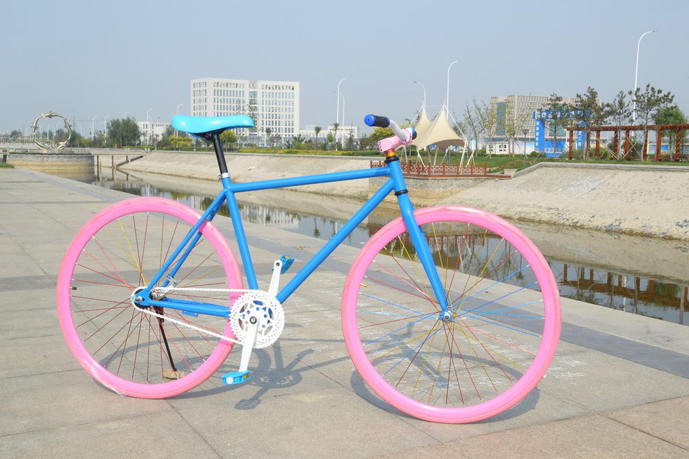 fixie Bicycle Fixed gear bike single speed bike with coaster hub fixie bike fixie bike flip-flop available wholesale bicicleta speed gear в луганске