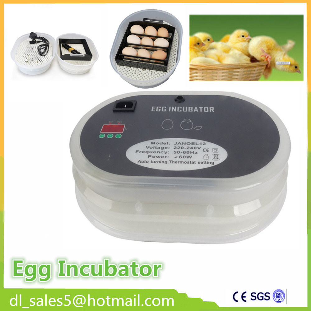 Cheap egg incubator Humidity and Temperature Automatic Chicken Incubator for Parrot Quail Chicken Egg Hatcher Brooder chicken egg incubator hatcher 48 automatic mini parrot egg incubators hatcher hatching machines