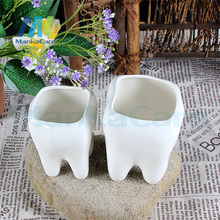 Simple and modern creative home furnishings Features pots succulents pots/tooth shape Pen case personality