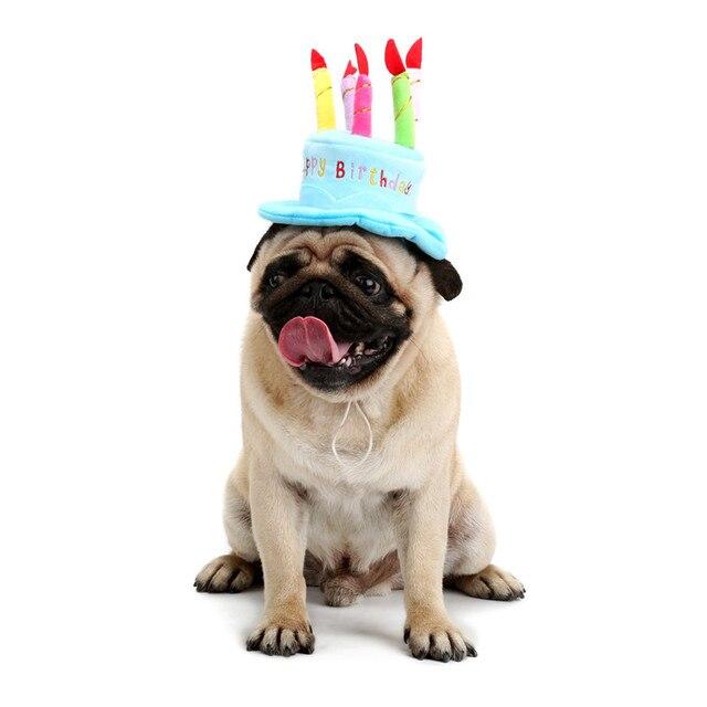 Schone Haustier Hund Katze Geburtstag Mutzen Weichen Material Kerzen