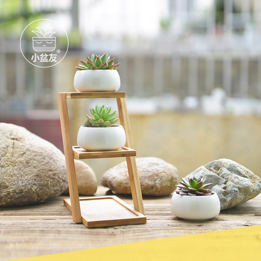 2019 Creative White Succulent Plant Flower Pot Holder Ceramic Decorative Oblate Flower Pot & Three Layer Bamboo Shelf Pot Set
