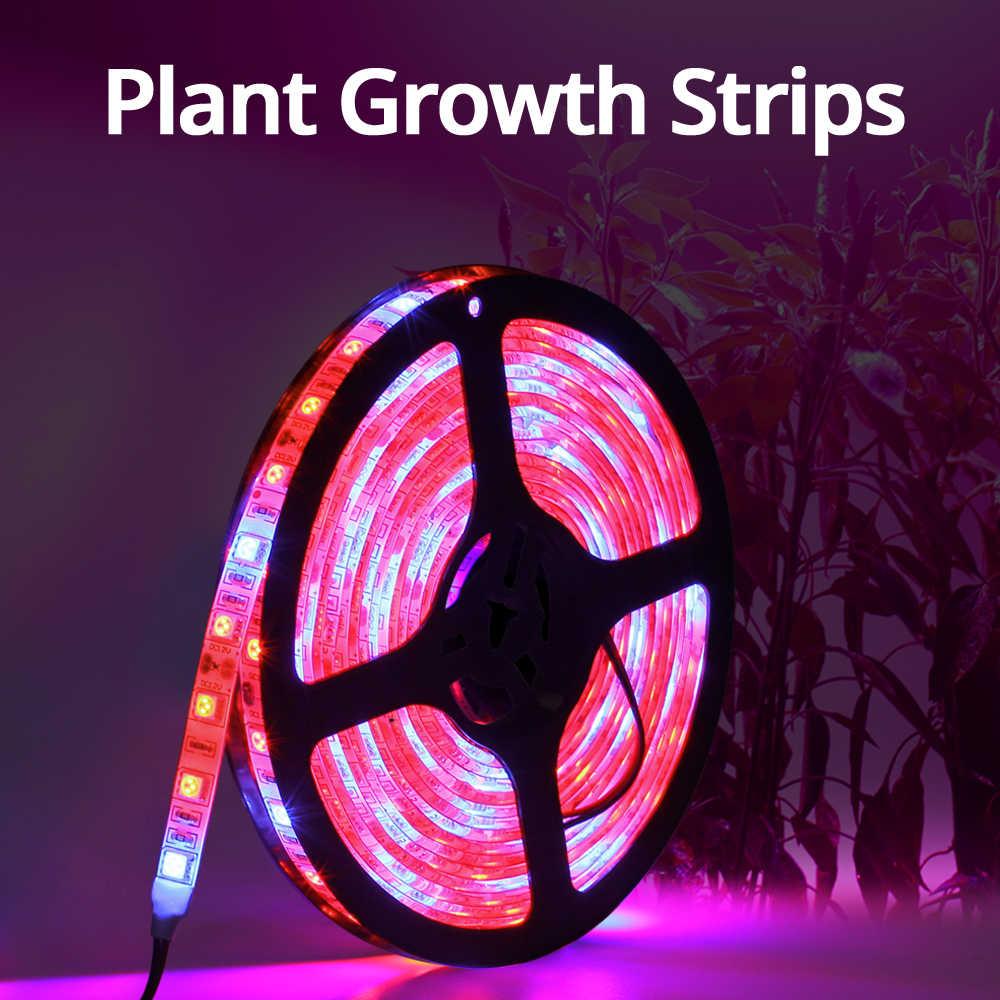 5M Led Phyto Lampade a Spettro Completo Ha Condotto La Luce di Striscia 300 Led 5050 di Chip Led Fitolampy Luci a Intensità per La Serra Idroponica pianta